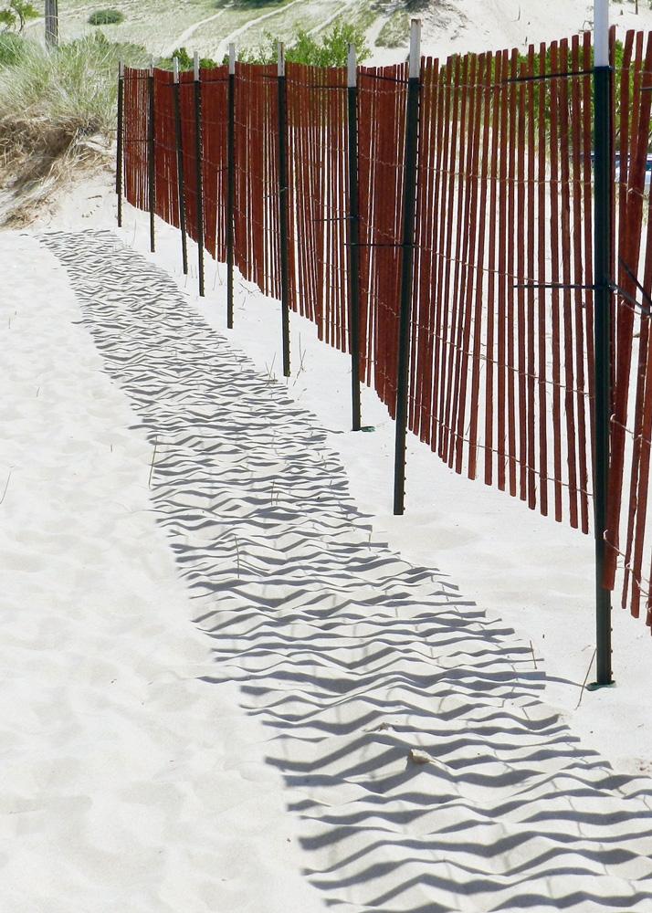 Summer fence, © 2016 Susan Barsy