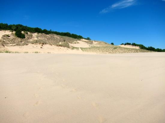 Dune upon dune, © 2014 Susan Barsy