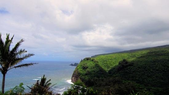 King Kamehameha land (the Big Island, Hawaii), 2014 Susan Barsy