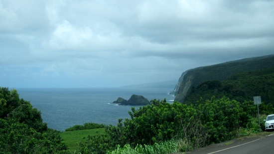 We arrived (the End of the Road, Pololu, Hawaii), © 2014 Susan Barsy