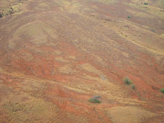 aerial view of the arid desert of north Hawaii Island, a symphony of rust and gold colors..
