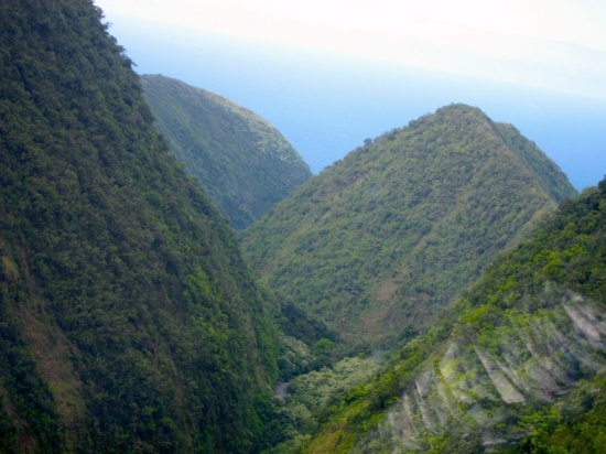 aerial view down a steep-sided ravine toward the Pacific Ocean.