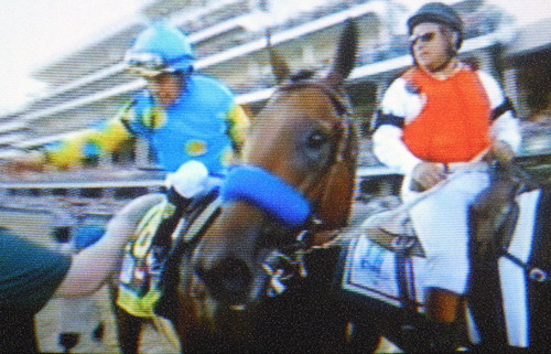 American Pharoah and jockey Victor Espinoza (screen shot), © 2015 Susan Barsy