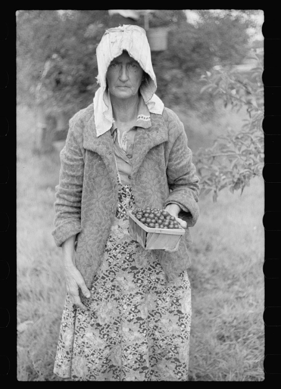 A worn middle-aged woman holding a box of strawberries she has picked.