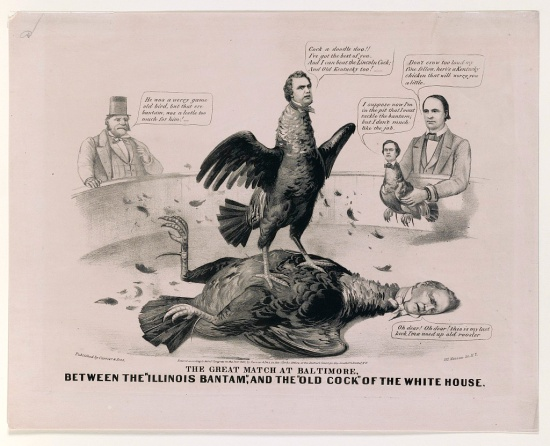 Stephen Douglas and James Buchanan as cocks fighting to the death.