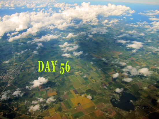 day-56